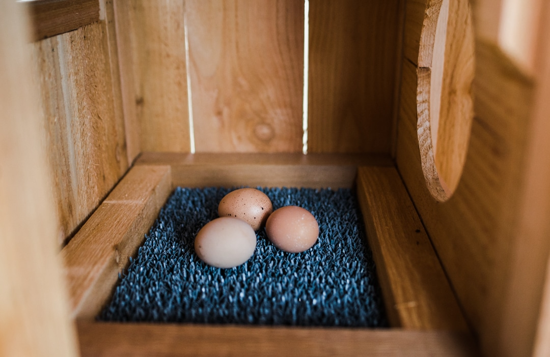 Roost & Root - Stand-Up Chicken Coop
