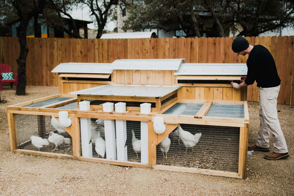 Urban Coop Company - Round-Top Sustain™ Chicken Coop